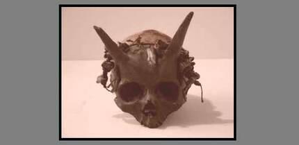 Des crânes extraterrestres ?.