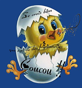 coucou-copie-1