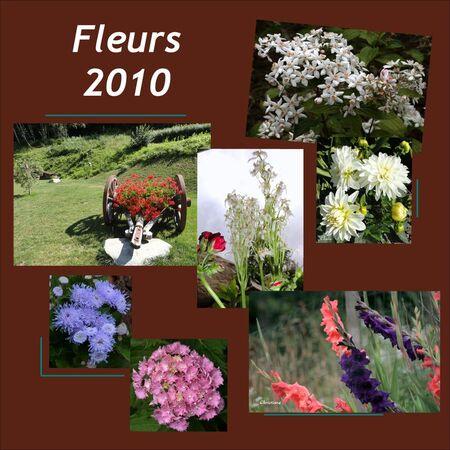 Fleurs_2010