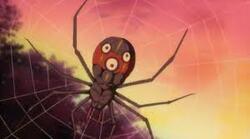 l' Araignée