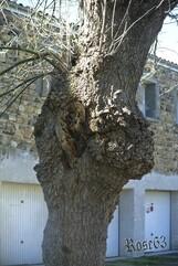 Jeudi 27 février  Le Breuil-Sur-Couze