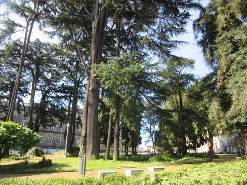 Porto 6