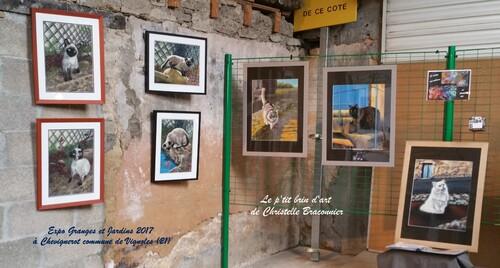 Juin 2017 - 2ème prix du public à l'expo Granges et Jardins à Chevignerot (21)