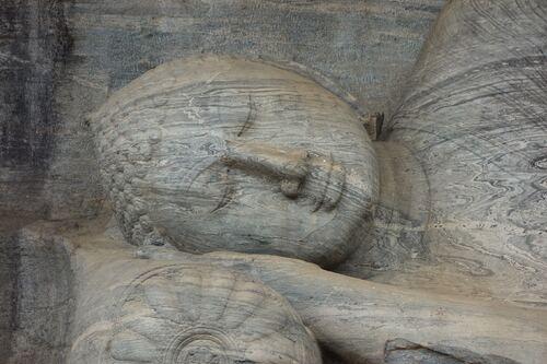 24 février au 9 mars: Le Sri Lanka, terre des éléphants...