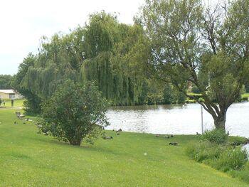 Le circuit Le Sacq-Damville