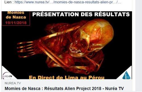 ALIEN PROJECT - Les momies du Pérou/5.