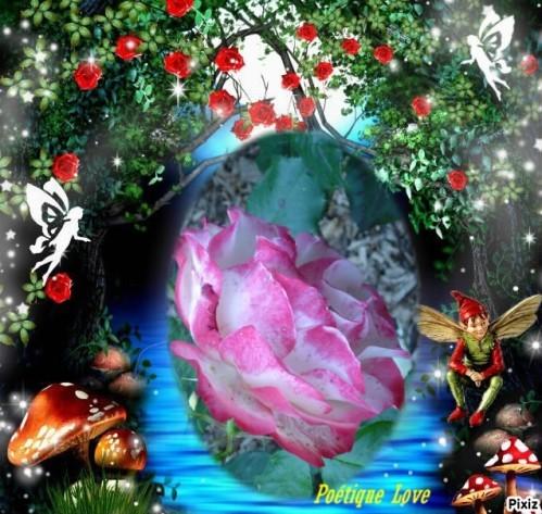 Creat-pixiz-Au-jardin-des-plantes--13-.jpg
