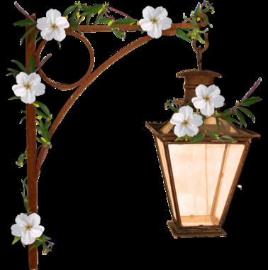Ornements Floraux Série 27