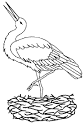 La cigogne