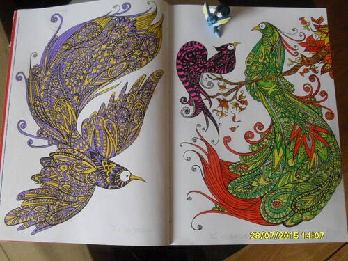 Double page oiseaux du Bestiaire