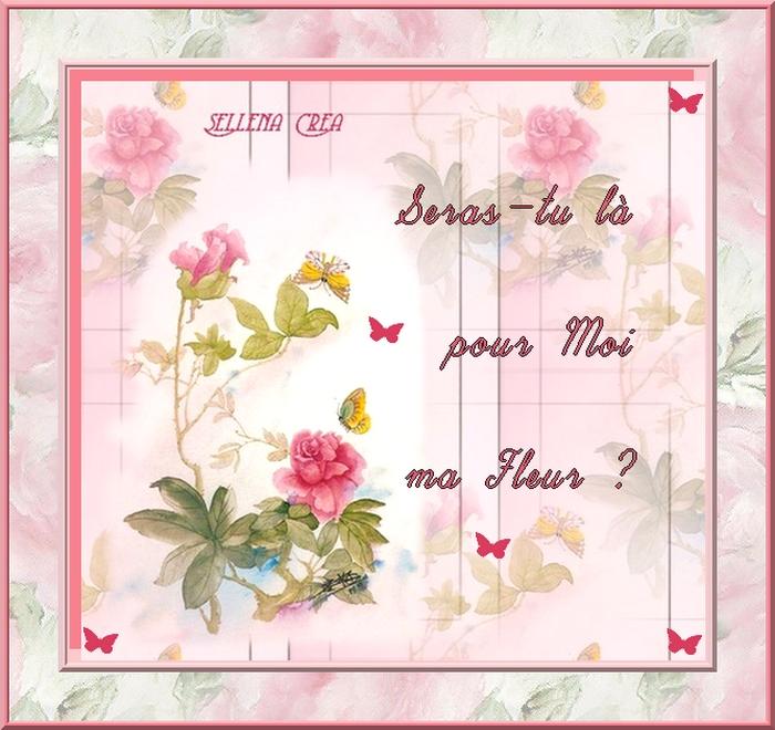 394 - Seras-tu là pour moi ma Fleur ?