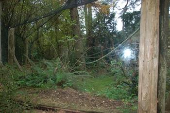 dierenpark amersfoort d50 2011 101