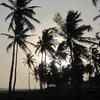 Bénin Route des pêches