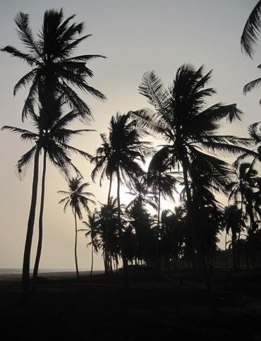 depuis Cotonou