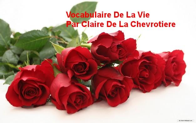 Vocabulaire De La Vie    Par Claire De La Chevrotiere