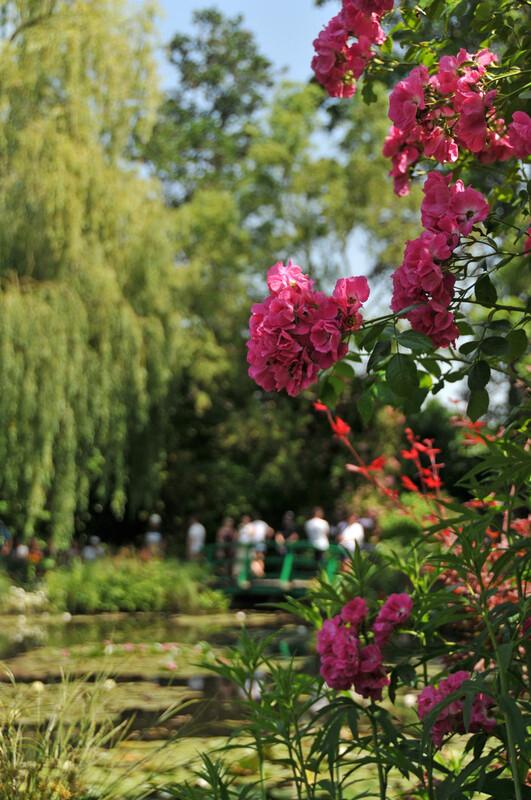 Petit tour dans l'Eure : Giverny (4), les Nymphéas