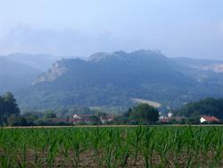 Chemin d'Arles 2008 -