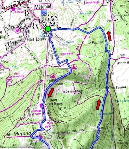 (25) Tour du Mont D'Or à la frontière franco-suisse - GR 5 / GRP