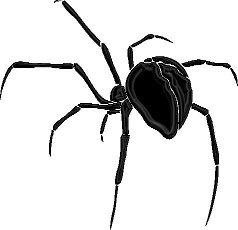ARAIGNEE / SPIDER