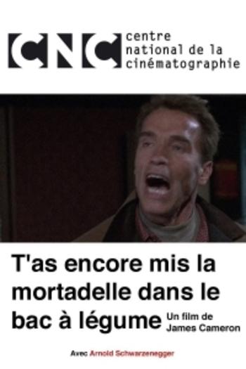 _mortadelle