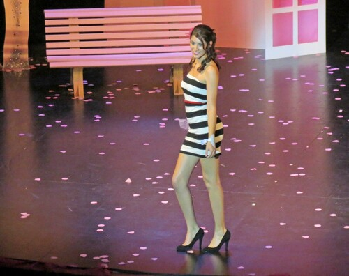L'élection de Miss Côte d'Or au Théâtre Gaston Bernard : Les candidates....