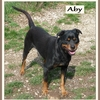 Aby R 1