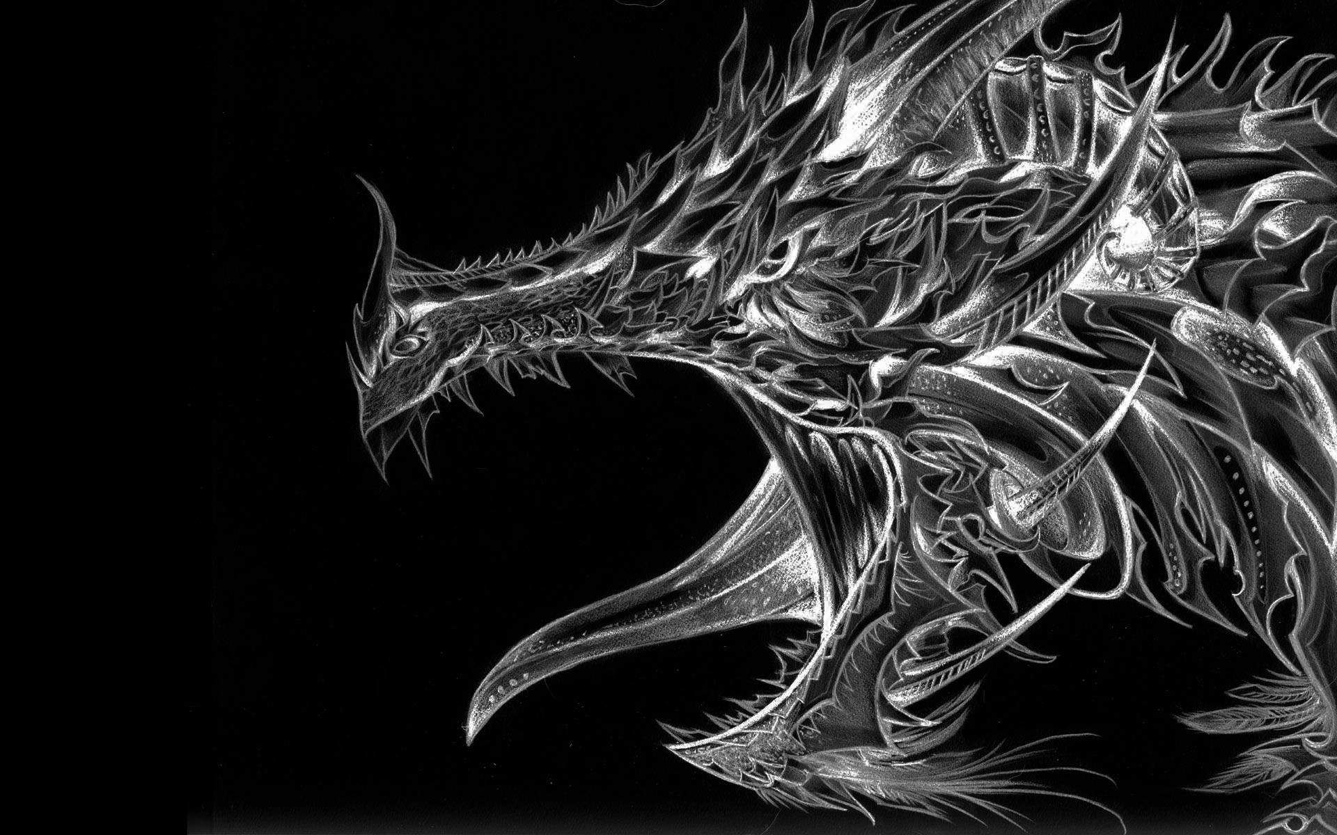 Dragons - Ont-ils existé ?