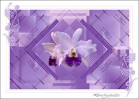 Orchidéas