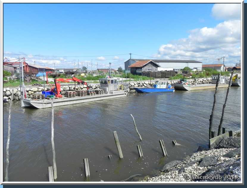 Gujan Mestras - Le port du Canal - 3/4