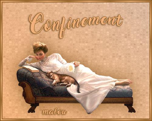 10 - Confinement