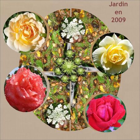 Jardin_Lo_2009