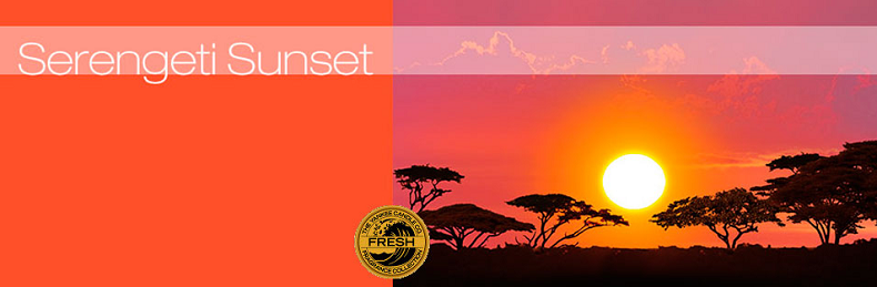 tartelette Yankee Candle - serengeti sunset