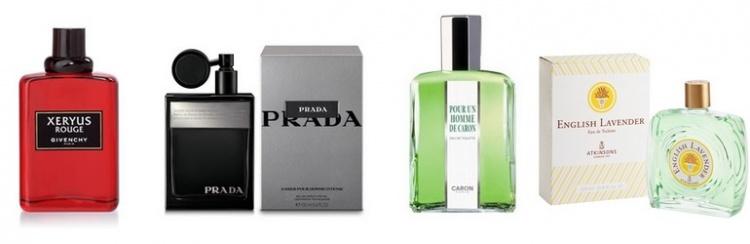 Les fougères, des parfums masculins