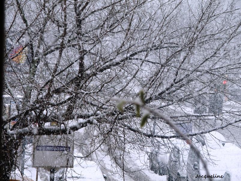neige..encore!