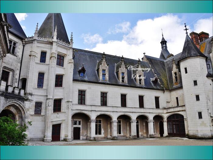 Chaumont-sur-Loire II...