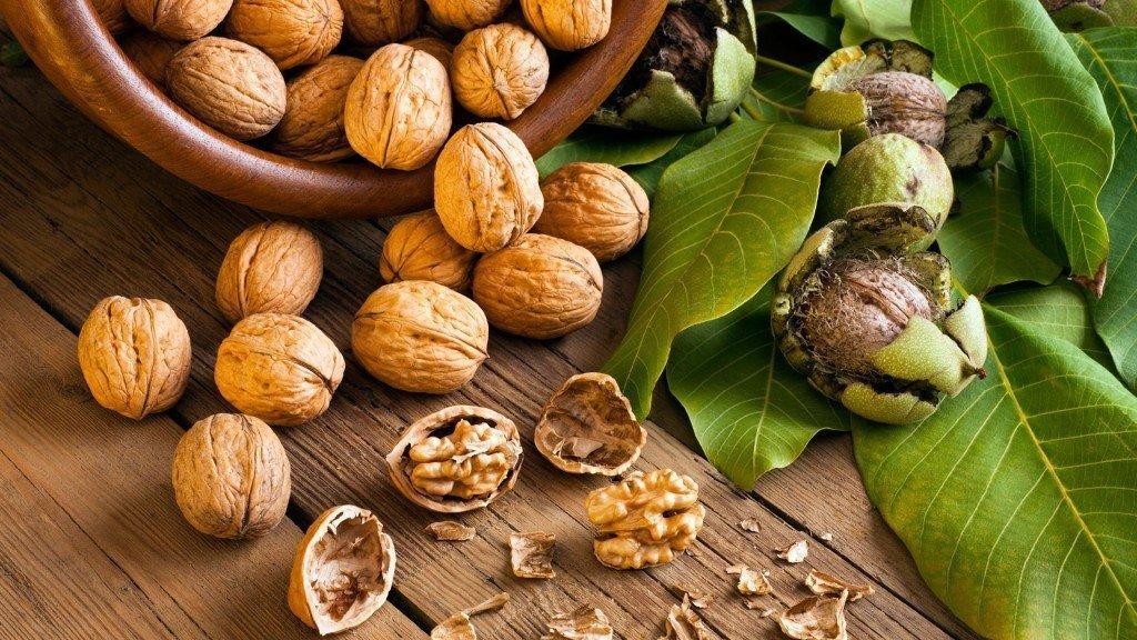 Стенки от грецких орехов при сахарном диабете