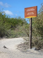 Carnet route Galapagos