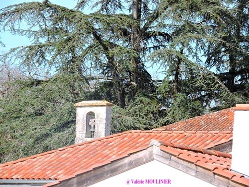 St Pierre de Clairac : mes photos