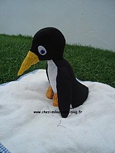 pingouin 07