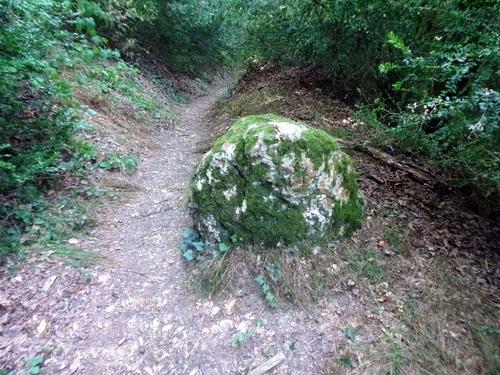 Sentier qui remonte au chemin des Gâts - Châteaudun
