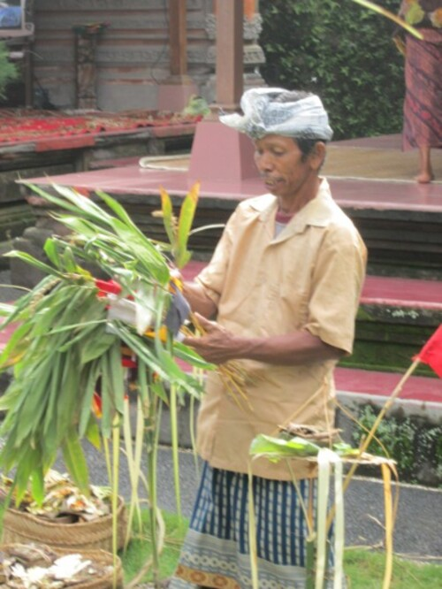 JOURNEE PARTICULIERE A UBUD