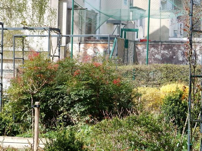 Parc keith haring: printemps 2016