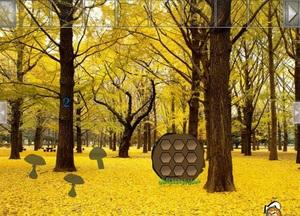 Jouer à Easy yellowish forest escape