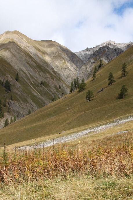 Engadine... Parc National et autres espaces