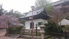 Jour 11 : Miyajima-Osaka