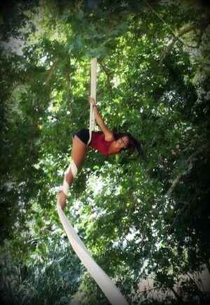 dance ballet class aerial acrobats forest