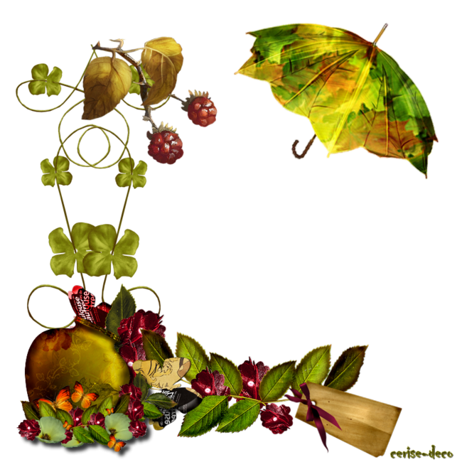 cadeau cluster automne