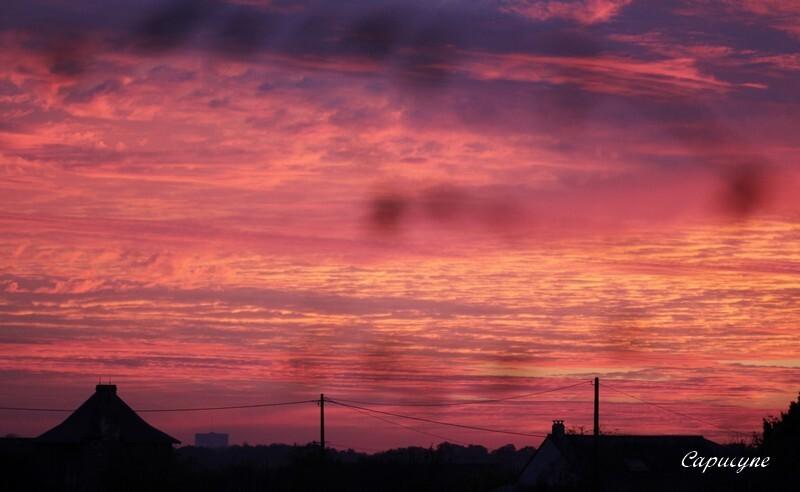 28 11 2013 coucher de soleil (5)