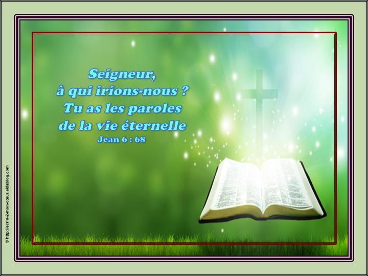 Le Seigneur a les paroles de la vie éternelle - Jean 6 : 68