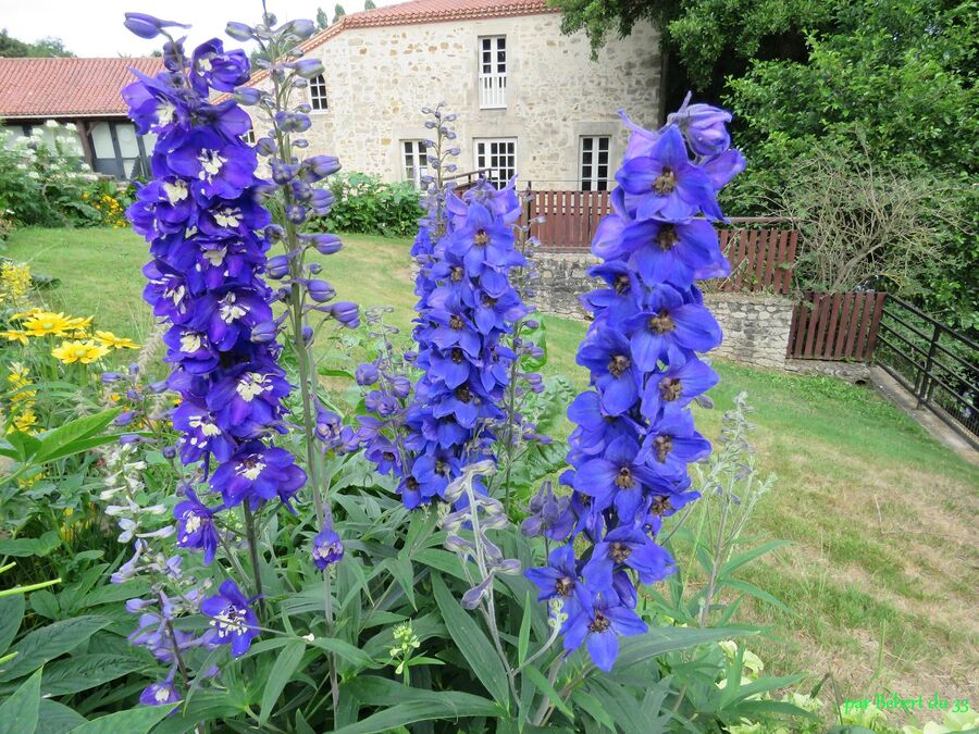 Le Poiré sur Vie en Vendée